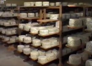 maduracion quesos artesanos
